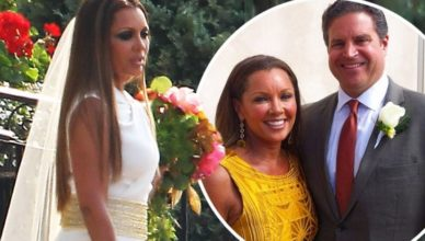 Jim Skirp Wife Vanessa Williams